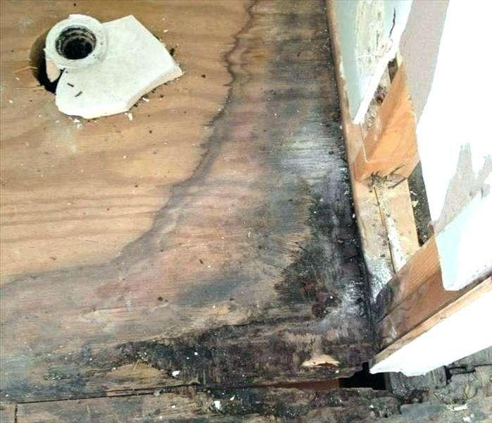 Cover Up Bathroom Remodels, Bathroom Floor Repair Water Damage Cost